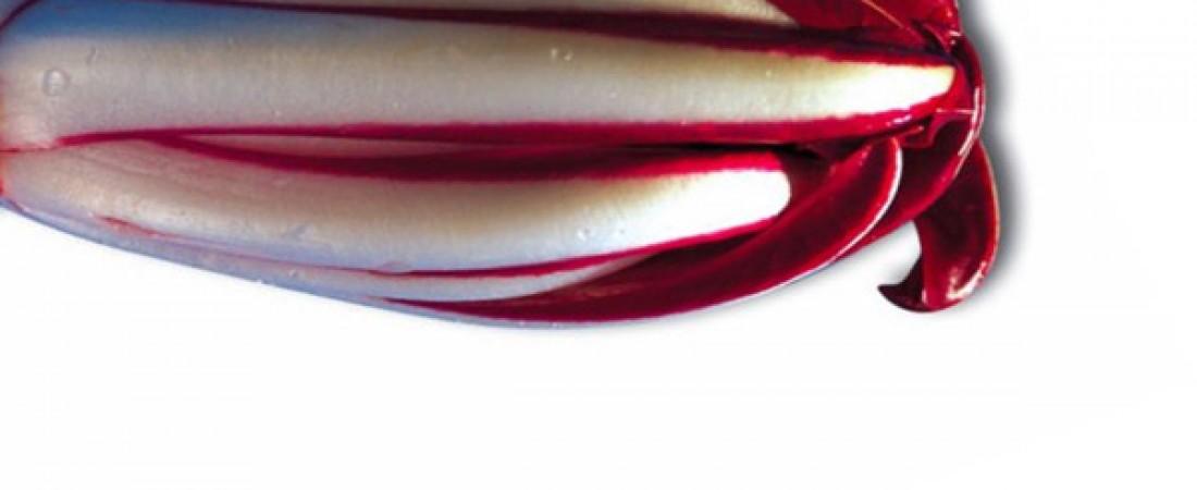 Degustazione Radicchio Rosso di Treviso